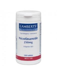 NIACIN AS NICOTINAMIDE (Vitamin B3) 250mg (100 Tablets)